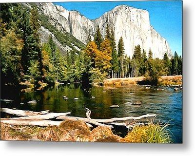 Half Dome Yosemite National Park Metal Print by Barbara Snyder
