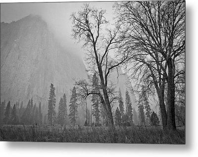 Metal Print featuring the photograph Yosemite Storm by Priya Ghose