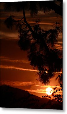 Yosemite  Sunset Metal Print