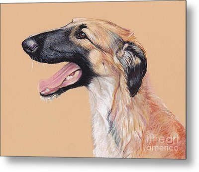 Young Female Borzoi Metal Print by Charlotte Yealey