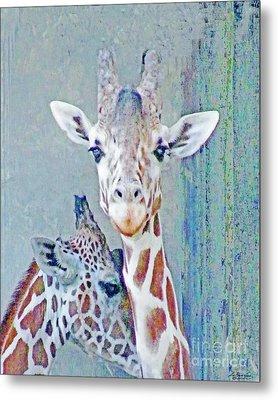 Young Giraffes Metal Print