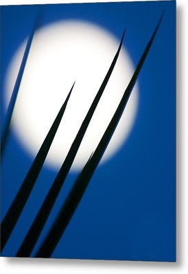 Metal Print featuring the photograph Yucca Moon by Jim Garrison