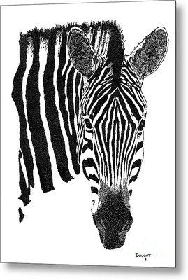 Zebra 1 Metal Print