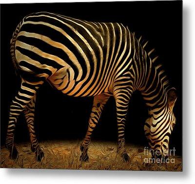 Zebra 20150210brun Metal Print