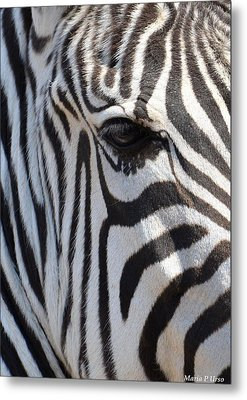 Zebra Eye Abstract Metal Print by Maria Urso