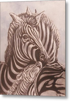Zebra Family Metal Print
