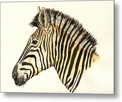 Zebra Head Study Metal Print by Juan  Bosco