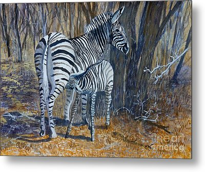Zebra Mother And Foal Metal Print by Caroline Street