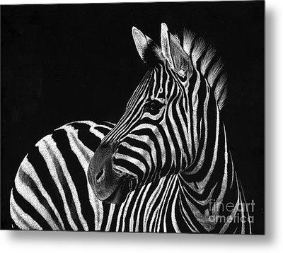 Zebra No. 3 Metal Print by Sheryl Unwin