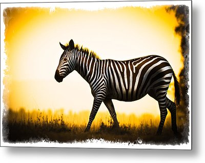 Metal Print featuring the photograph Zebra Sunset by Mike Gaudaur