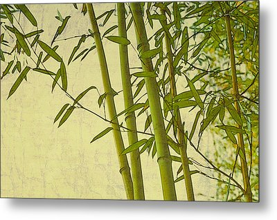 Zen Bamboo Abstract I Metal Print by Marianne Campolongo