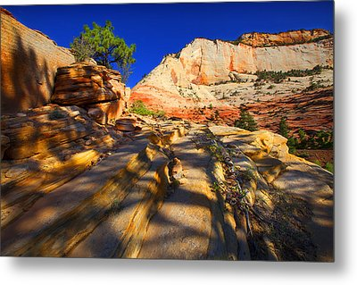 Zion National Park Usa Metal Print