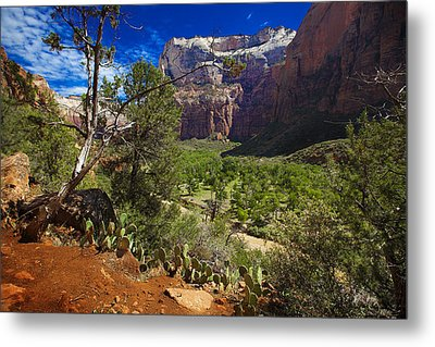 Zion National Park River Walk Metal Print
