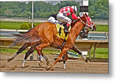 Metal Print featuring the photograph  Betting On Number Four by Alice Gipson