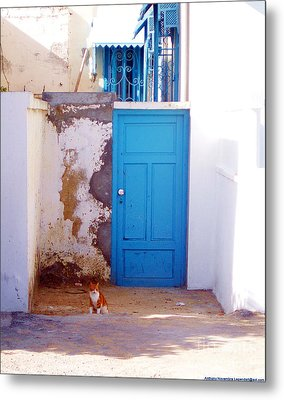 Blue Door Cat Metal Print by Anthony Novembre