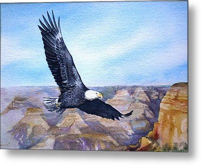 Eagle   American Bald Eagle Metal Print by Sandra Phryce-Jones