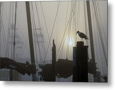 Early Morning At The Boat Docks Metal Print by Dorothy Cunningham