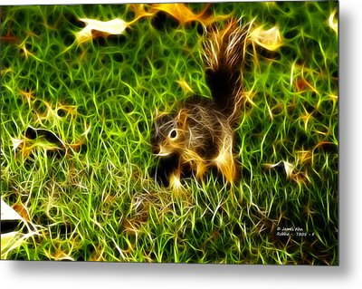 - Fractal - Pointer - Robbie The Squirrel Metal Print by James Ahn