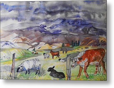 Mixed Farm Animals Graze In Field Metal Print by Annie Gibbons