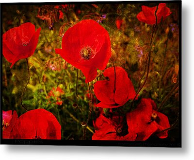 Metal Print featuring the photograph  Poppies by Beverly Cash