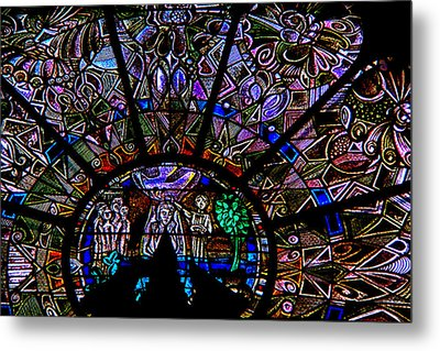 The Color Of Life Metal Print