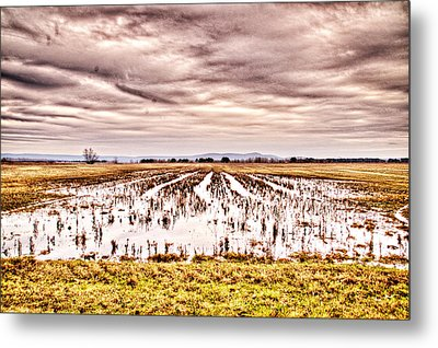 0704-8703 Winter Clouds At Holla Bend Wildlife Refuge Metal Print by Randy Forrester