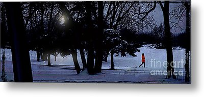 A Walk In The Snow Metal Print by Jim Wright