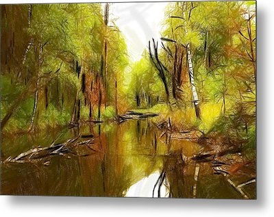 Along The River Metal Print by Steve K