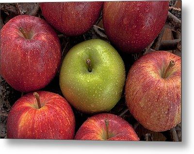 Apples Metal Print by Joana Kruse