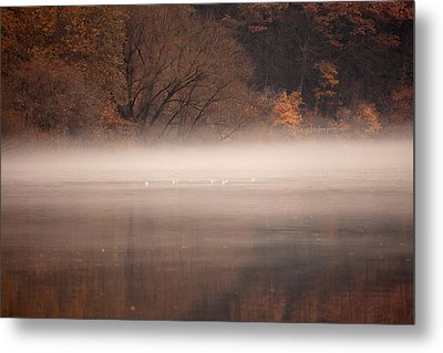 As The Fog Lifts Metal Print by Karol Livote