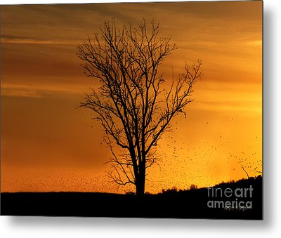 Metal Print featuring the digital art At End Of Day II by Rhonda Strickland