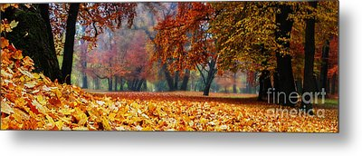 Autumn In The Woodland Metal Print by Hannes Cmarits