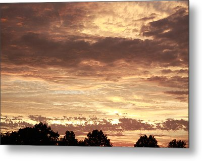 Metal Print featuring the photograph Beautiful Sunset by Ann Murphy