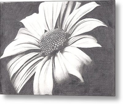 Black And White Flower Metal Print by Amanda Rhone