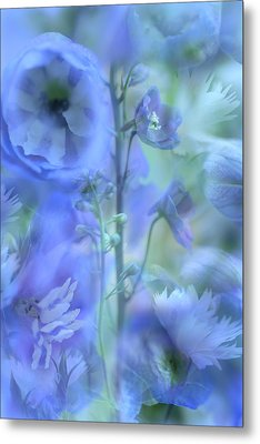 Blue Delphinium Metal Print by Bonnie Bruno
