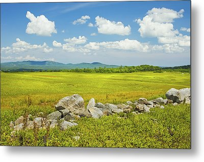 Blue Sky And Clouds Over Maine Blueberry Field Metal Print by Keith Webber Jr