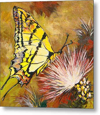 Butterfly Metal Print by Sandy Tracey