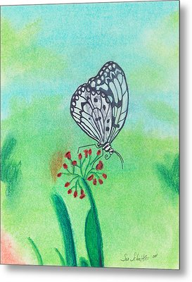 Butterfly Metal Print by Susan Schmitz