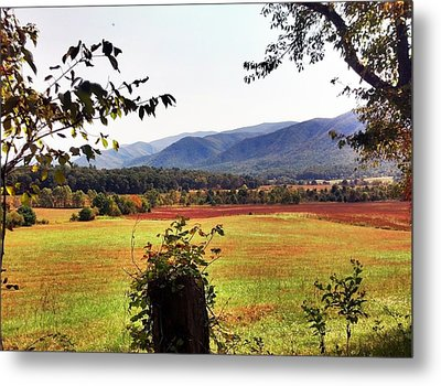 Metal Print featuring the photograph Cades Cove by Janice Spivey