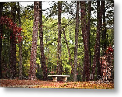 Come Sit A Spell Metal Print by Kim Henderson