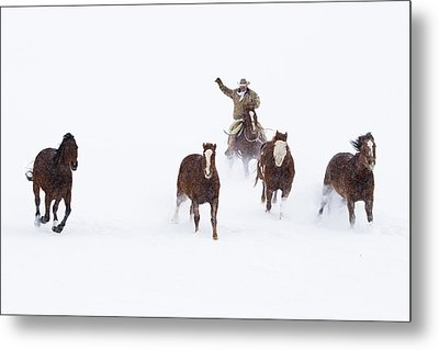 Cowboys And Horses In Winter Metal Print by Frank Lukasseck