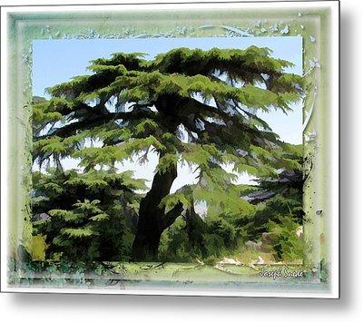 Do-00512 Cedar Forest Metal Print by Digital Oil