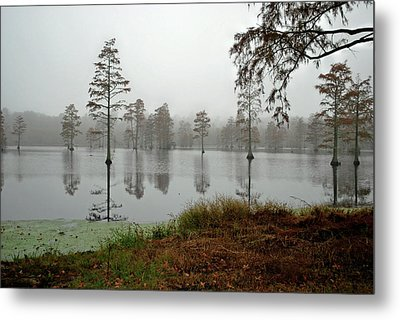 Early Morning On The Lake Metal Print