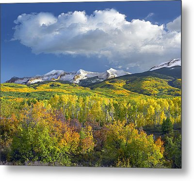 East Beckwith Mountain Flanked By Fall Metal Print by Tim Fitzharris