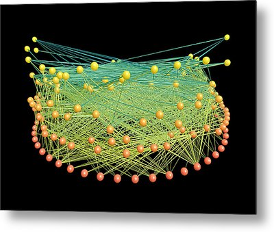 Ecological Food Web Metal Print by Neo Martinez
