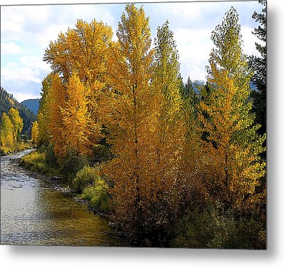 Metal Print featuring the photograph Fall Colors by Steve McKinzie