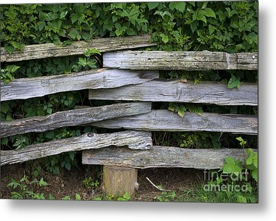 Metal Print featuring the photograph Fence Weave by Bill Thomson