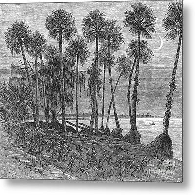 Florida: St. Johns River Metal Print by Granger