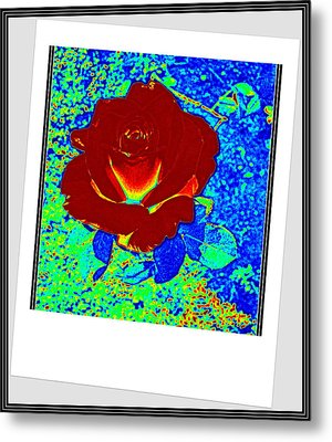 Flowers Flowers And Flowers Metal Print by Anand Swaroop Manchiraju