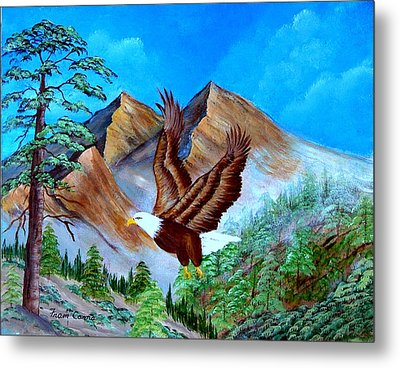 Freedom Flight Metal Print by Fram Cama